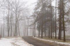 parco nevoso della città di inverno in foschia Immagine Stock