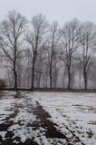 parco nevoso della città di inverno in foschia Fotografia Stock Libera da Diritti
