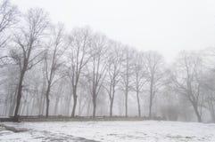 parco nevoso della città di inverno in foschia Fotografie Stock Libere da Diritti