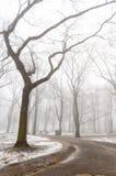 parco nevoso della città di inverno in foschia Fotografia Stock