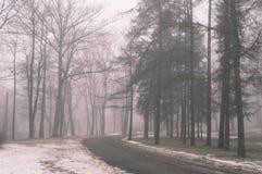 parco nevoso della città di inverno in foschia - vecchio sguardo d'annata Fotografia Stock