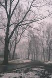parco nevoso della città di inverno in foschia - vecchio sguardo d'annata Fotografie Stock