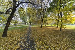 Parco Nord in Milan at fall Stock Photos