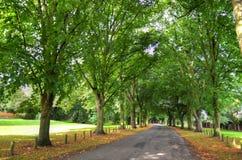 Parco Nottingham Nottingham, Regno Unito, Inghilterra di Wollaton immagini stock libere da diritti