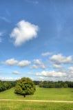 Parco Nottingham Nottingham, Regno Unito, Inghilterra di Wollaton immagini stock