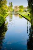 Parco in Olanda 2 Immagine Stock