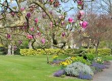 Parco piacevole in primavera Fotografie Stock Libere da Diritti