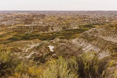 Parco provinciale del dinosauro, Alberta, Canada fotografia stock libera da diritti