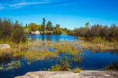 Parco provinciale di eredità della vecchia diga di Pinawa fotografie stock libere da diritti
