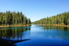 Parco provinciale di Strathcona: Plateau severo ~ prati di paradiso immagine stock