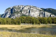Parco provinciale principale Squamish di Stawamus Immagini Stock