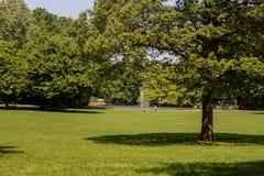 Parco pubblico con il campo di erba verde fotografie stock