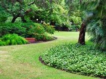 Parco pubblico Manicured, Perth, Australia occidentale immagine stock libera da diritti