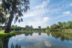 Parco pubblico nella grande citt? Concetto di aria aperta e del posto Tema del paesaggio e della natura Posizione di Bangkok Tail fotografie stock