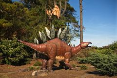 Parco Pungo, la Virginia di Jerrassic Immagine Stock Libera da Diritti