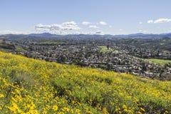 Parco regionale di foresta vergine in Thousand Oaks California Fotografie Stock Libere da Diritti