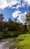 Parco regionale di Hunua Fotografia Stock Libera da Diritti