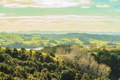 Parco regionale Nuova Zelanda di Mahurangi Fotografie Stock