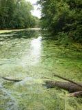 Parco Schweinfurt/Franconia Fotografie Stock