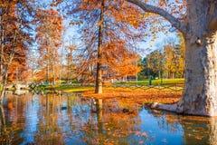 Parco Sempione Obraz Royalty Free