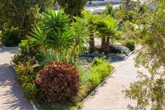 Parco in Sidi Ifni, Marocco Fotografia Stock