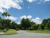 Parco sotto cielo blu 1 immagine stock
