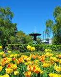 Parco a Stoccolma Immagine Stock
