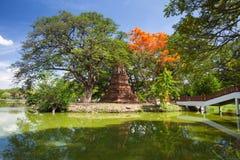 Parco storico di Ayutthaya, Tailandia Immagini Stock Libere da Diritti