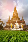 Parco storico, si Ayutthaya, Tailandia di Phra Nakhon Porcile d'annata Immagine Stock