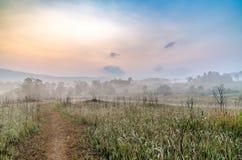 Parco tailandese di nazione immagini stock libere da diritti
