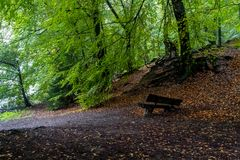 Parco tedesco di autunno della natura Fotografia Stock
