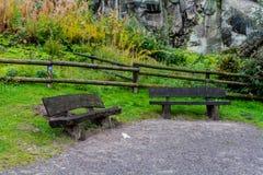 Parco tedesco di autunno della natura Immagine Stock