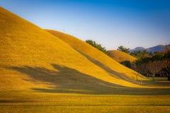 Parco Thumuli (Derynvon) in Gyeongju IL SUD COREA Fotografia Stock Libera da Diritti
