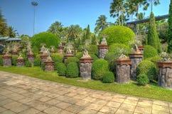 Parco tropicale di Nong Nooch Immagini Stock
