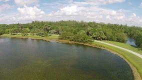 Parco tropicale nella vista aerea di Florida archivi video