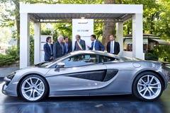 Parco Valentino - Salone & Gran Premio - Car Show dell'aria aperta a Torino Fotografia Stock Libera da Diritti
