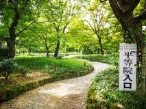 Parco verde Fotografia Stock