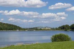 Parco verde con il lago Fotografie Stock Libere da Diritti