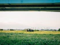 Parco vicino al fiume di Tamagawa, Tokyo, Giappone immagini stock libere da diritti