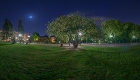 Parco vicino all'istituto politecnico di Kyiv alla notte fotografia stock