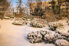 Parco Vienna di Setagaya Fotografia Stock