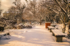 Parco Vienna di Setagaya Immagine Stock Libera da Diritti