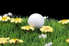 Parcours ouvert avec la balle de golf photos stock