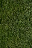 Parcours ouvert de golf Images stock