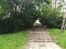 Parcul Tineretului在布加勒斯特 免版税库存照片