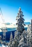Pardw Halni narciarscy dźwignięcia Obraz Royalty Free