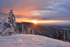 Pardwy zimy Halny wschód słońca Zdjęcie Royalty Free