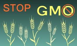 Pare a bandeira do gmo Imagens de Stock Royalty Free