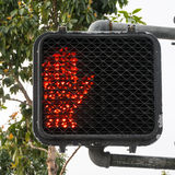 Pare de cruzar a luz do sinal Imagens de Stock Royalty Free