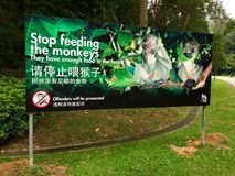 Pare el alimentar los monos del letrero Imágenes de archivo libres de regalías
